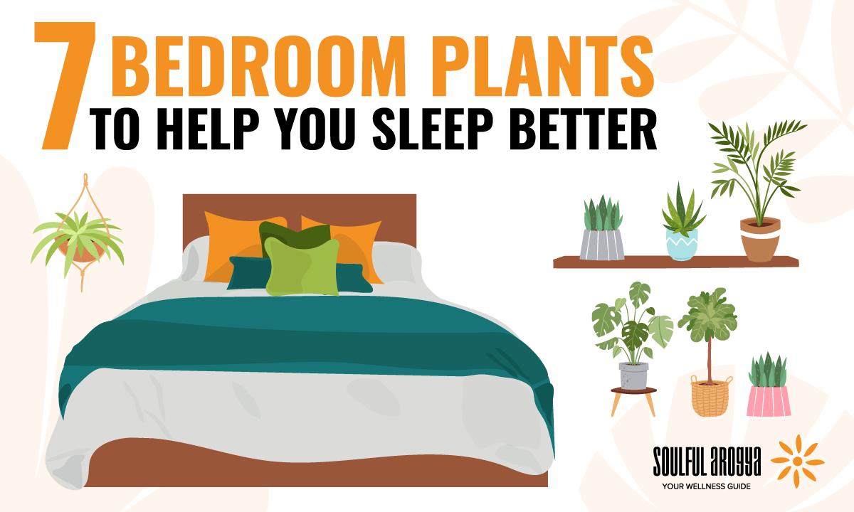 7 Bedroom Plants to Help You Sleep Better